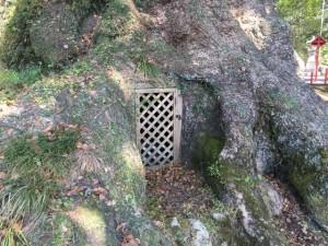 蒲生神社 大楠の洞